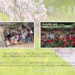 「SHA.sha.PAKU de 撮ってき展 vol.15」