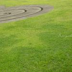 【開催場所変更となりました】10/26(木)開催*佐藤 和斗先生の「室生芸術の森公園でアートな写真を撮ろう♪」