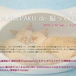 SHA.sha.PAKU de 撮ってき展 vol.19