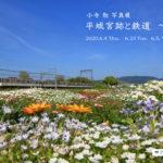 【予告】小寺 勉 写真展『平城宮跡と鉄道 ~花~』