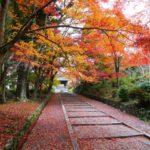 【満席】12/3(木)開催*SHA.sha.PAKU vol.81「穴場の京都紅葉名所へ行こう♪」
