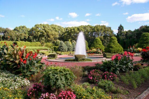 SHA.sha.PAKU vol.86「メルヘンチックなローズガーデンを撮ろう♪」@京都府立植物園